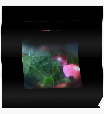 TTV Image ( Through The Viewfinder)#9 Poster