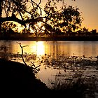 Sunset on the Georgina River, Qld Australia by Carmel Williams