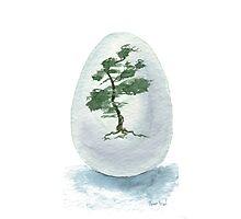 Little Zen Tree 219 Photographic Print