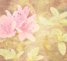 Pink Azaleas Dreamy Greeting Card by Susan Gottberg