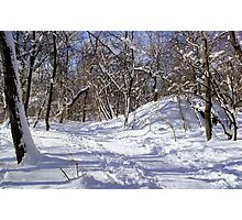 Snowy Path  Photographic Print