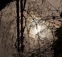 Patterns upon the water by newbeltane