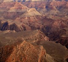 The Grand Canyon by Michelle Callahan