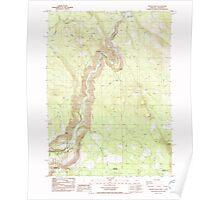 USGS Topo Map Oregon Chicken Hills 279329 1986 24000 Poster