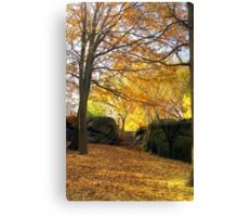 Fall on Stone Stairwell  Canvas Print