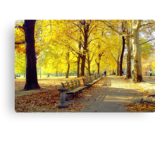 Autumn Afternoon in Central Park  Canvas Print