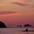 Sea Stacks in the Pacific Ocean at Sunset by Jeff Goulden