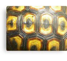 Angulate Tortoise Shell Metal Print