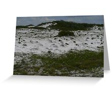 Destin Dune Greeting Card