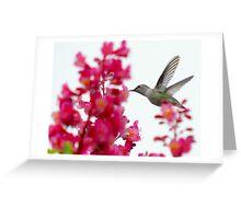 hummingbird on the wing 4 Greeting Card