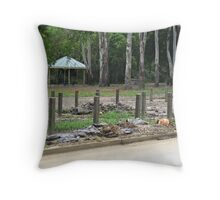 Brisbane Floods 2011 - Clean Up - Up and down the street Throw Pillow