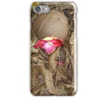 Cannon Ball tree iPhone Case/Skin