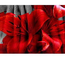 The Flower and the Towel Photographic Print