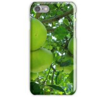 pomelo fruit tree iPhone Case/Skin