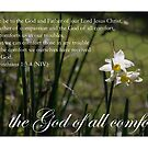 The God of all comfort by Catherine Davis