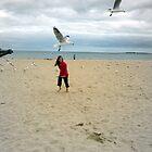 Chasing Seagulls by Margaret Walker