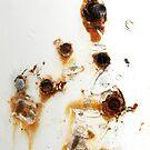Distortion by Kathie Nichols