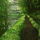Union Canal - The Way To You (Colour Version) by Kevin Skinner