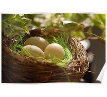 Easter Nest - Decoration Poster