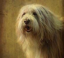 Charlie  ! by Irene  Burdell