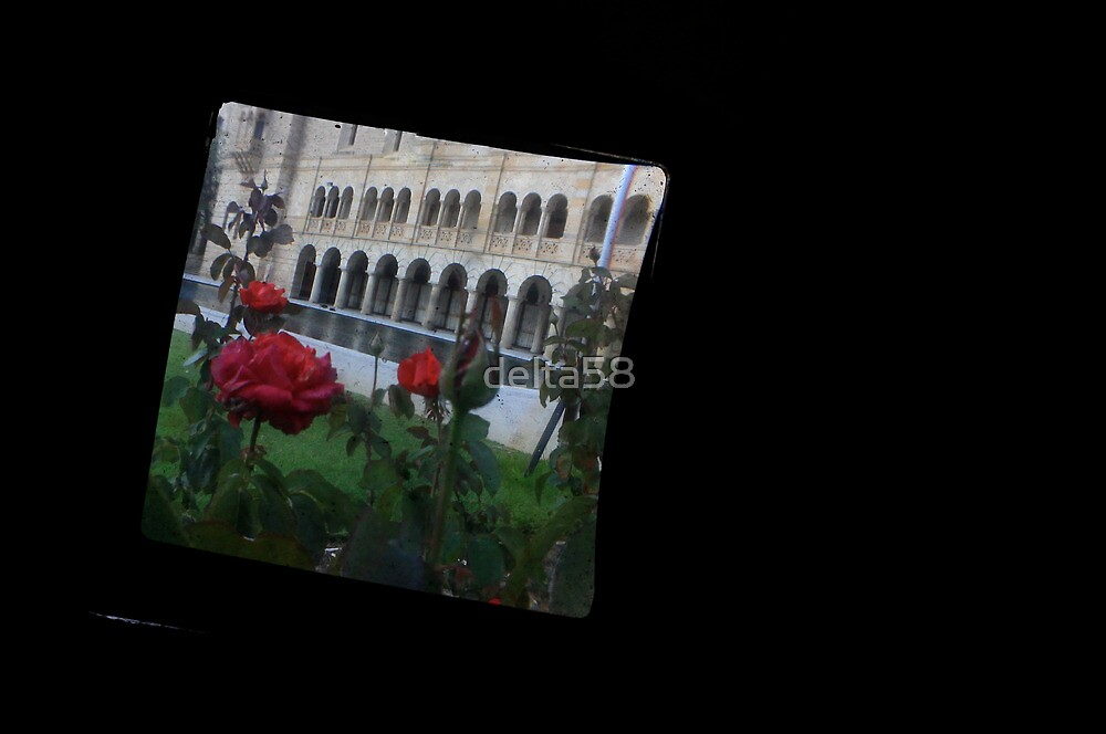 TTV Image ( Through The Viewfinder)# 6 UWA Cards by delta58