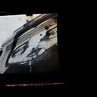TTV Image ( Through The Viewfinder)# 11 UWA Cards by delta58