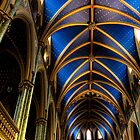 Notre Dame Ottawa by Beth Jennings
