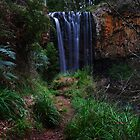Trentham Falls by Greg Thomas