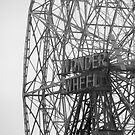 Wonder Wheel by Ashli Amabile