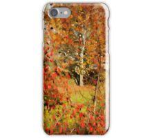 ~ Chudleigh Rosebuds ~ iPhone Case/Skin
