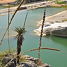 Above the Pedernales by BrianDawson