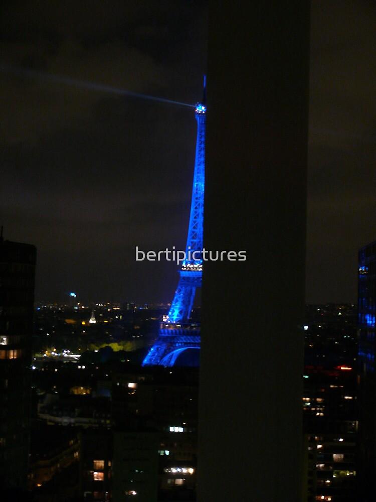 Paris la Grand Dame by bertipictures