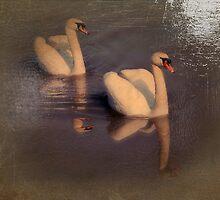 Paradise Lake by deb cole