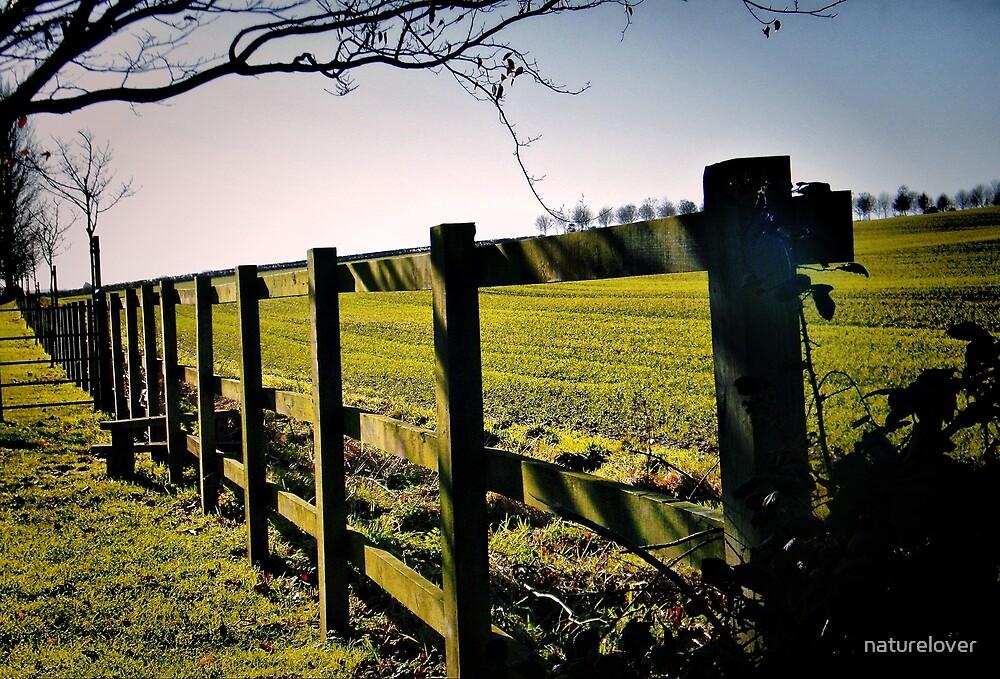 Rural Boundaries... by naturelover