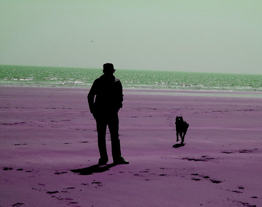 Beach by Mark Cassidy
