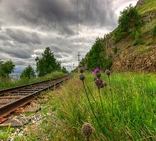 The Circum-Baikal Railroad, Siberia, Russia by Dmitry Shytsko