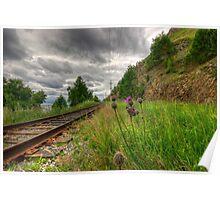 The Circum-Baikal Railroad, Siberia, Russia Poster