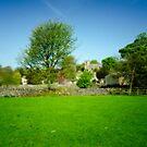 Across Downham Meadows by John Hare