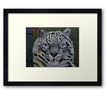 Did you ever see a Snow Leopard BLINK Framed Print