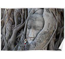 ancient buddha, ayuthaya, thailand Poster