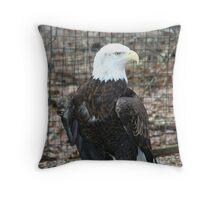 Bald Headed Eagle Throw Pillow