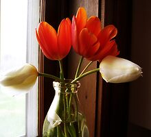 Tulips on the Windowsill by Jing3011