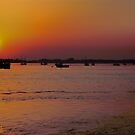 sunrise across the harbour by thermosoflask