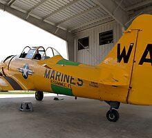 North American SNJ-6 Texan (Warbird Adventures) by Mark Kopczewski