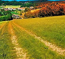 Path down and up to the village center by Patrick Jobst