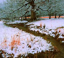 WINTER STREAM,CADES COVE by Chuck Wickham