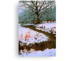 WINTER STREAM,CADES COVE Canvas Print