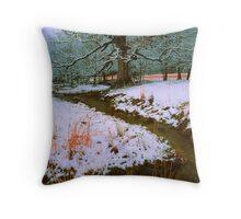 WINTER STREAM,CADES COVE Throw Pillow