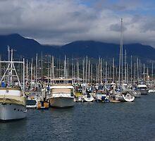 Santa Barbara Harbor by Scott Switzer
