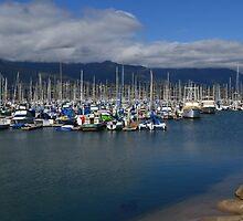 Santa Barbara Harbor Breakwater by Scott Switzer
